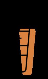Gulrót